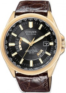 Citizen Eco-Drive World Perpetual AT 2